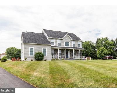 Garnet Valley Single Family Home For Sale: 1178 Stone Gates Turn
