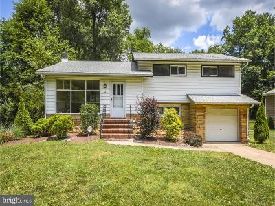Bucks County Single Family Home For Sale: 6 Ivy Lane