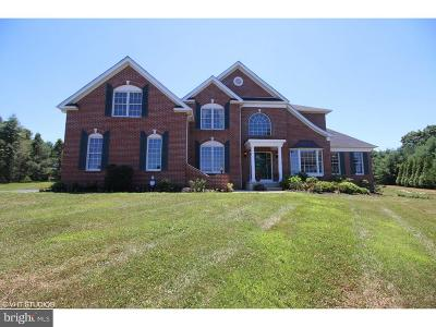 Garnet Valley Single Family Home For Sale: 20 Hudson Way