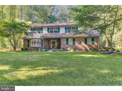 Newark Single Family Home For Sale: 115 Great Circle Road