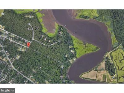 Millville Residential Lots & Land For Sale: 51 River Drive