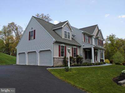 Columbia Single Family Home For Sale: 2680 Ironville Pike