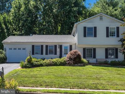 Leesburg Single Family Home For Sale: 923 Chancellor Street SW