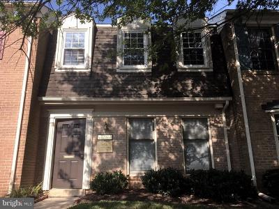 Rockville Condo For Sale: 966 Hungerford Drive #A-15