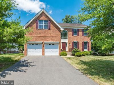 Ashburn Single Family Home For Sale: 20317 Medalist Drive