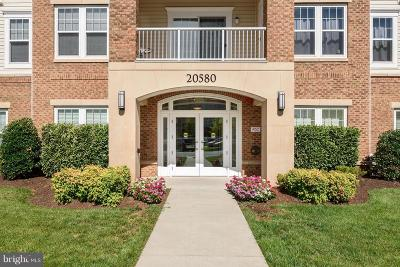 Ashburn Condo For Sale: 20580 Hope Spring Terrace #303