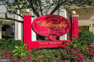 Chevy Chase Condo For Sale: 4515 Willard Avenue #1915S