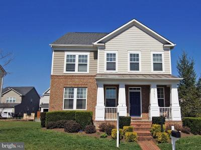 Leesburg Single Family Home For Sale: 22477 Aging Oak Drive