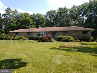 Pennington Single Family Home For Sale: 113 Route 31 S
