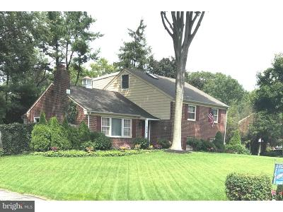 Delaware County Single Family Home For Sale: 209 Ridgewood Road