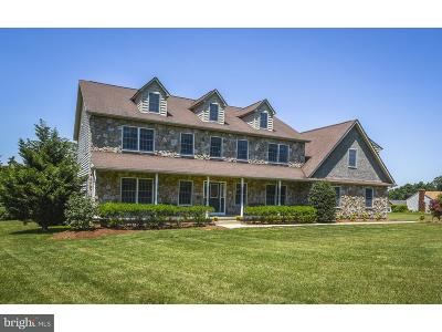 Bucks County Single Family Home For Sale: 2974 Fretz Valley Road