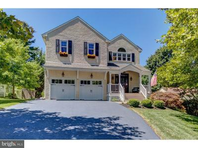 Delaware County Single Family Home For Sale: 104 Moscia Lane