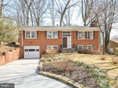 Falls Church Single Family Home For Sale: 3035 Hazelton Street