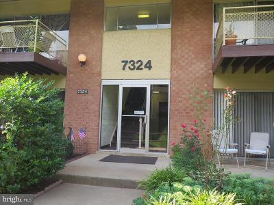 Falls Church Condo For Sale: 7324 Lee Highway #203