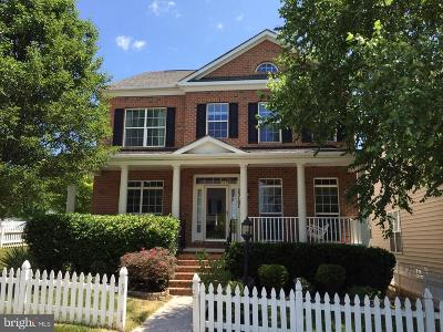 Clarksburg Single Family Home For Sale: 23107 Birch Mead Road