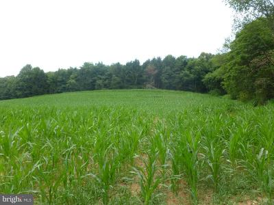 Baltimore County Residential Lots & Land For Sale: Everett Road