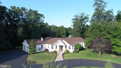 Dillsburg Single Family Home For Sale: 45 Tannery Road