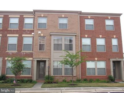 Ashburn Rental For Rent: 23469 Adagio Terrace