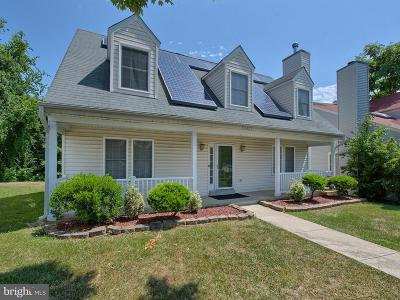 Germantown Single Family Home For Sale: 20431 Bloomingville Court