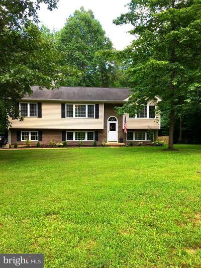 Fauquier County Single Family Home For Sale: 4602 McMillian Drive
