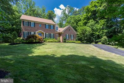 Manassas Single Family Home For Sale: 12864 Paddle Wheel Court