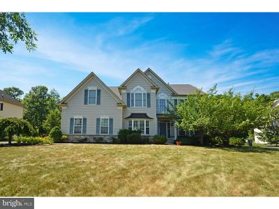 Bucks County Single Family Home For Sale: 5133 Craigs View