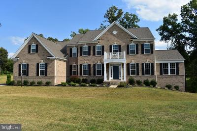 Manassas VA Single Family Home For Sale: $929,000