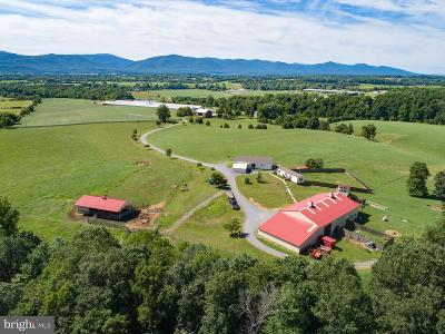 Elkton Farm For Sale: 4947 Bloomer Springs