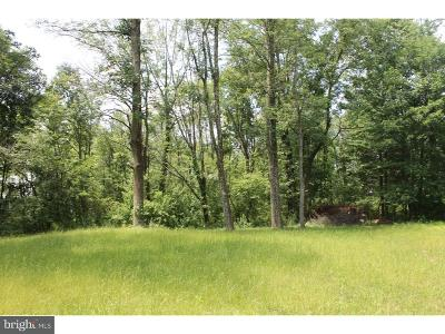 Residential Lots & Land For Sale: 2408 Diamond Street