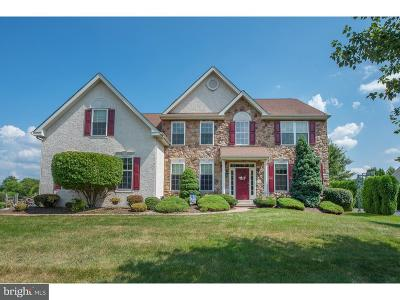 Phoenixville Single Family Home For Sale: 215 Drummers Lane