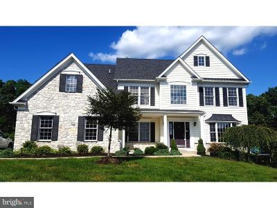 Bucks County Single Family Home For Sale: 1248 Revere Drive