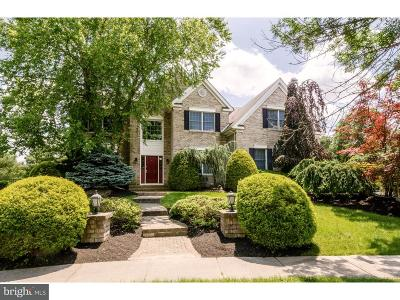 Princeton Junction Single Family Home For Sale: 10 Benjamin Court