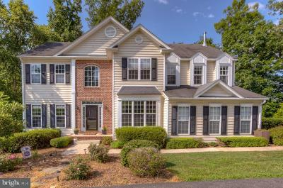 Albemarle County Single Family Home For Sale: 4949 Lake Tree Lane
