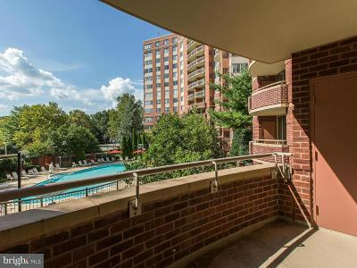 Rockville Condo For Sale: 5800 Nicholson Lane #1-L05