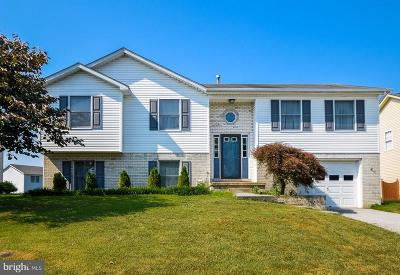 Frederick County Single Family Home For Sale: 205 Ivory Drive