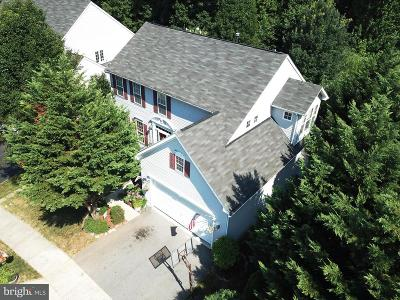 Montgomery County Single Family Home For Sale: 13823 Lullaby Road