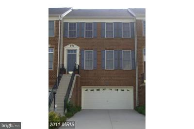Ashburn Rental For Rent: 22584 Scattersville Gap Terrace