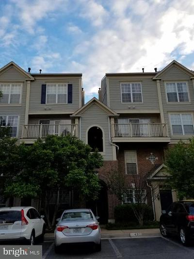 Falls Church Rental For Rent: 2295 Village Crossing Road #304