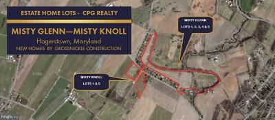 Hagerstown Single Family Home For Sale: 21216 Leiters Mill Road