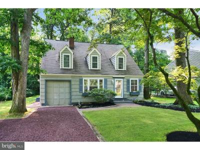 Princeton Junction Single Family Home For Sale: 39 Scott Avenue