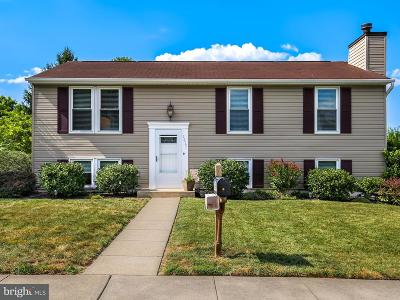 Frederick Single Family Home For Sale: 1213 Schaffer Drive