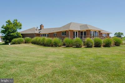 Queen Annes County Single Family Home For Sale: 224 Mallard Drive