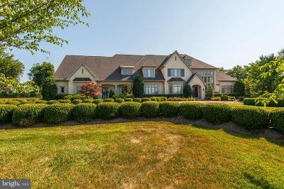 Leesburg Single Family Home For Sale: 40471 Grenata Preserve Place