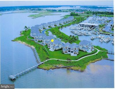 Narrows Pointe Condo For Sale: 526 Narrows Pointe Drive