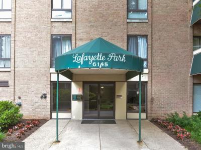 Falls Church Rental For Rent: 6145 Leesburg Pike #208