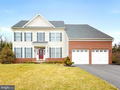 Hagerstown Single Family Home For Sale: 13614 Corello Drive