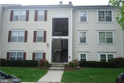 Montgomery County Condo For Sale: 14911 Cleese Court #4BA