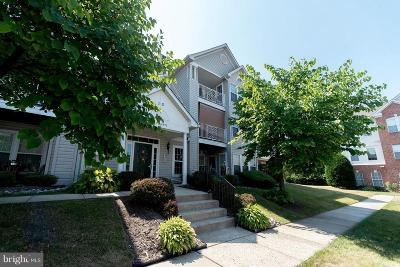 Baltimore Condo For Sale: 9581 Shirewood Court #9581