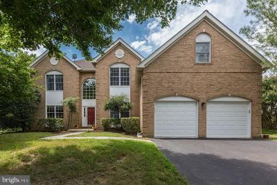 Reston Single Family Home For Sale: 1312 Dasher Lane