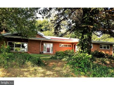 New Castle County Single Family Home For Sale: 2807 W 4th Street